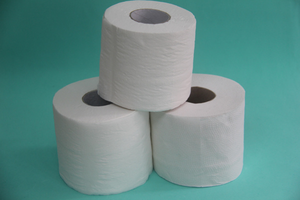 700 Sheets Virgin Toilet Tissue Paper pictures & photos