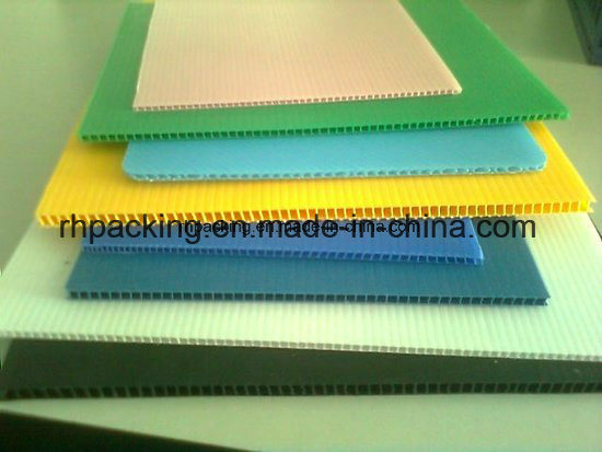 Black or White PP Hollow Board/Corrugated Plastic Sheet 1000*2000, 1220*2440 for Protection 2-3mm