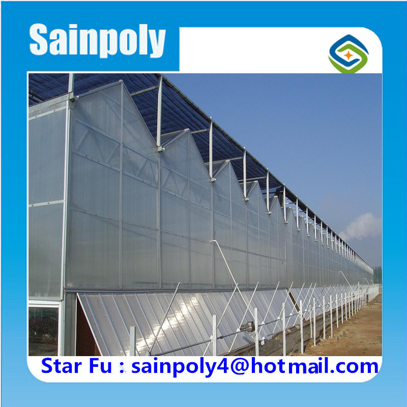 Cheaper Price PC-Sheet Hydroponic Greenhouse for Sale