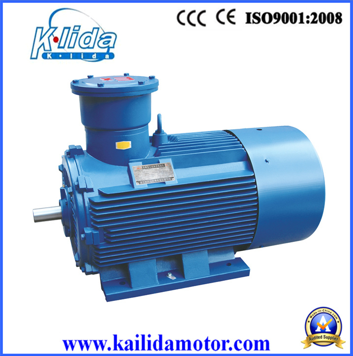 18.5kw/25HP 980rpm Explosion-Proof AC Three Phase Electric Motor