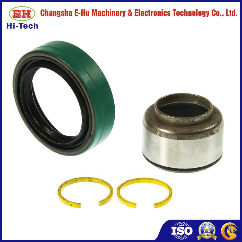 China Double Lip Viton Rubber Metric Rotary Shaft Oil Seal - China ...