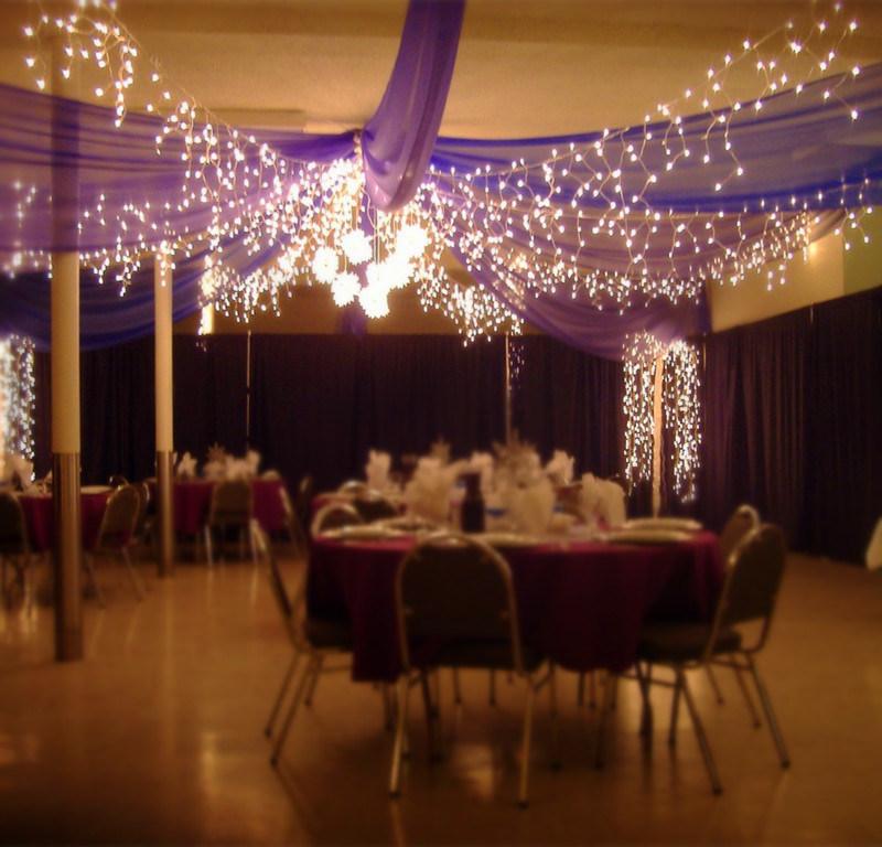 Hot Item 216 Leds Garden Lights Fairy Light Wedding Decoration Icicle