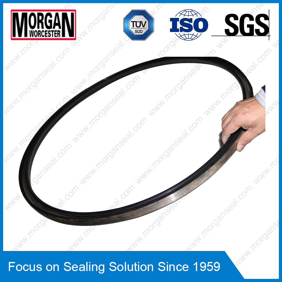 China Color/Dimension/Material Custom Large Rubber Ring Seals ...