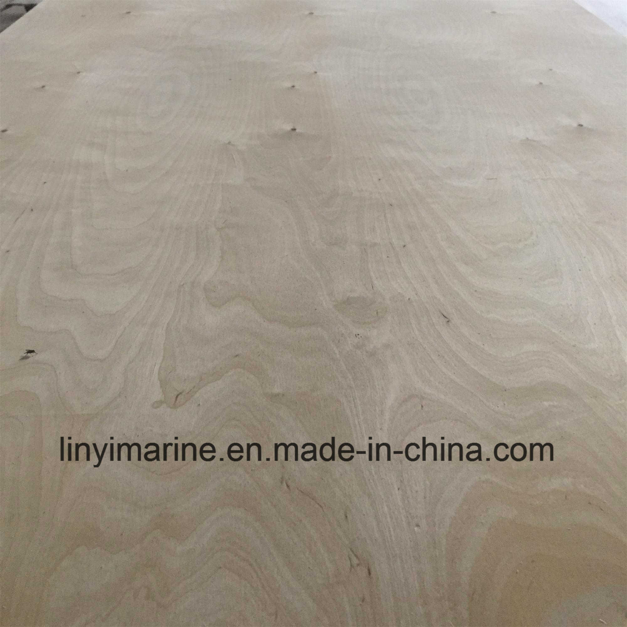 Russia Birch Plywood for USA Market Carb2 Bb/Bb Grade pictures & photos