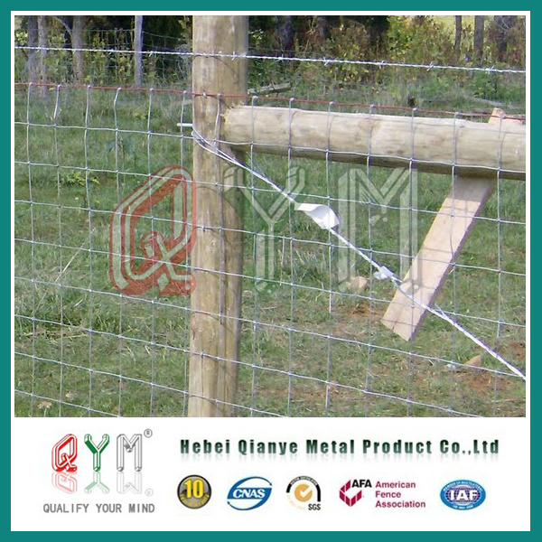 China Field Fence / Farm Fence/ Galvanized Iron Wire Woven Mesh ...
