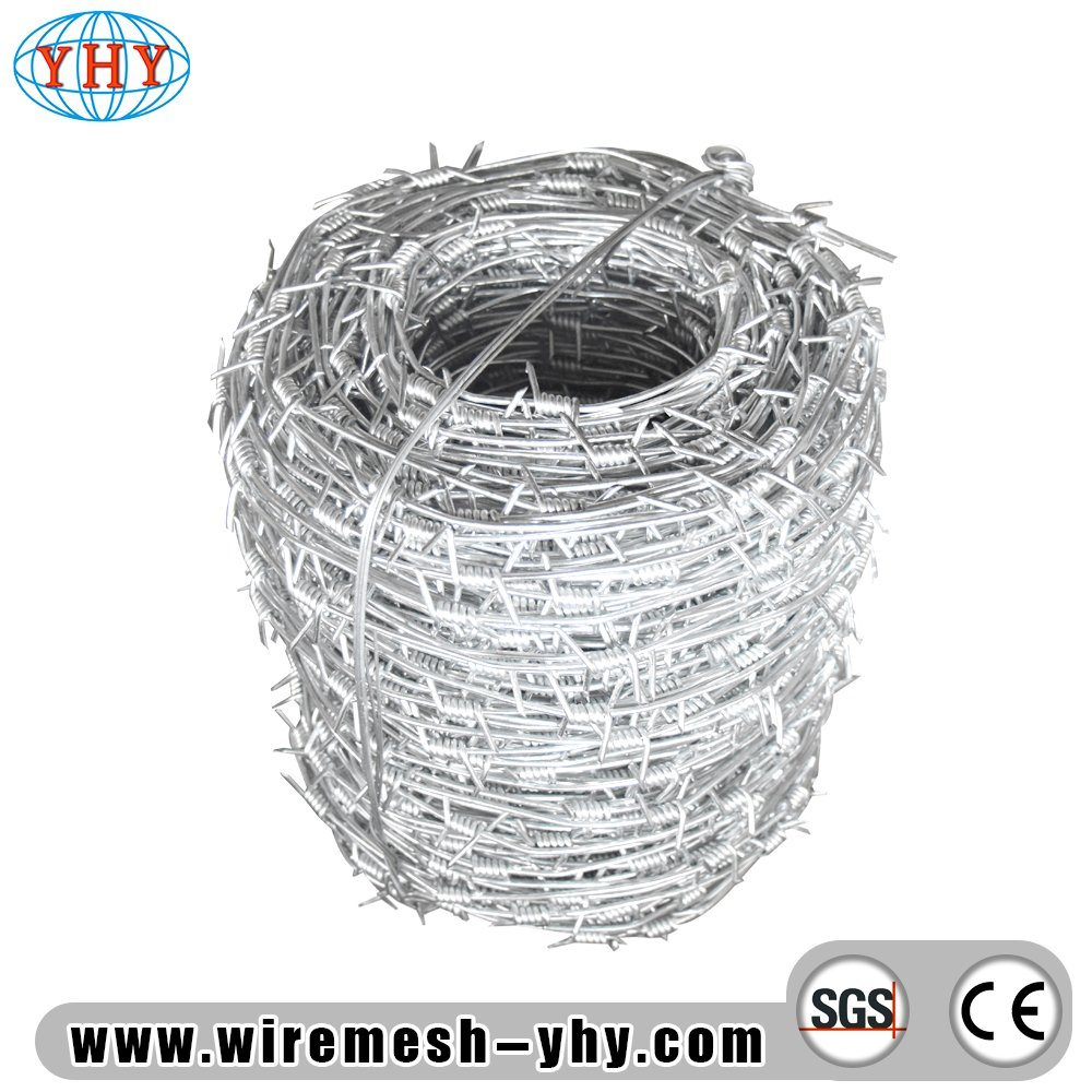 China Hot Dipped Galvanized 12X14# Steel Barbed Wire for Chain Link ...
