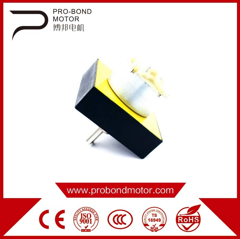 DC Brush Permenent Gear Motor 48zyj Whoesale
