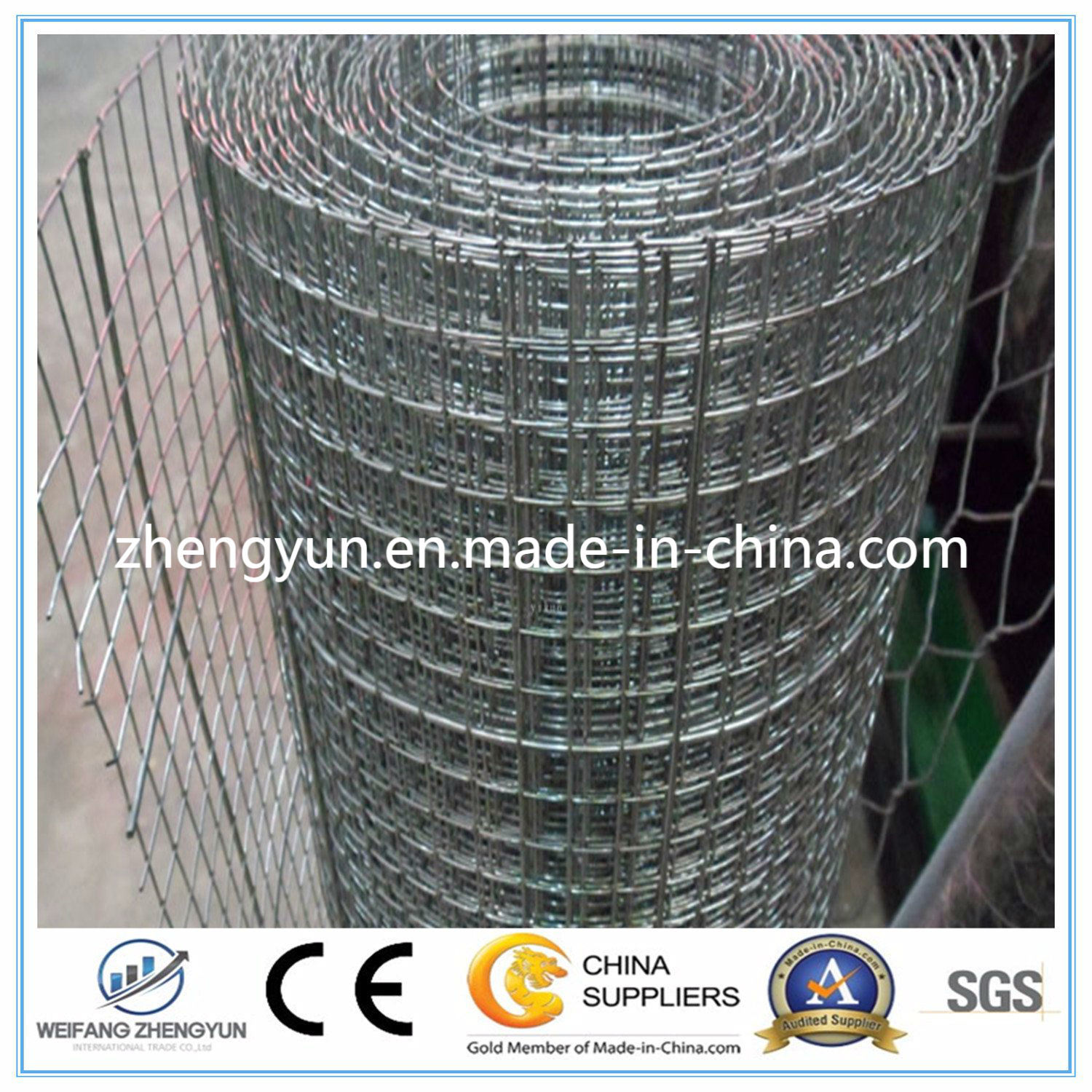 China Hot Dipped Galvanized Welded Wire Mesh/ Stainless Steel Welded ...