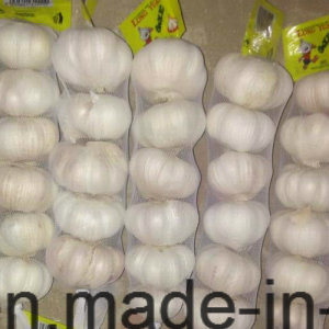 2017 New Crop Small Mesh Bag Packing White Garlic