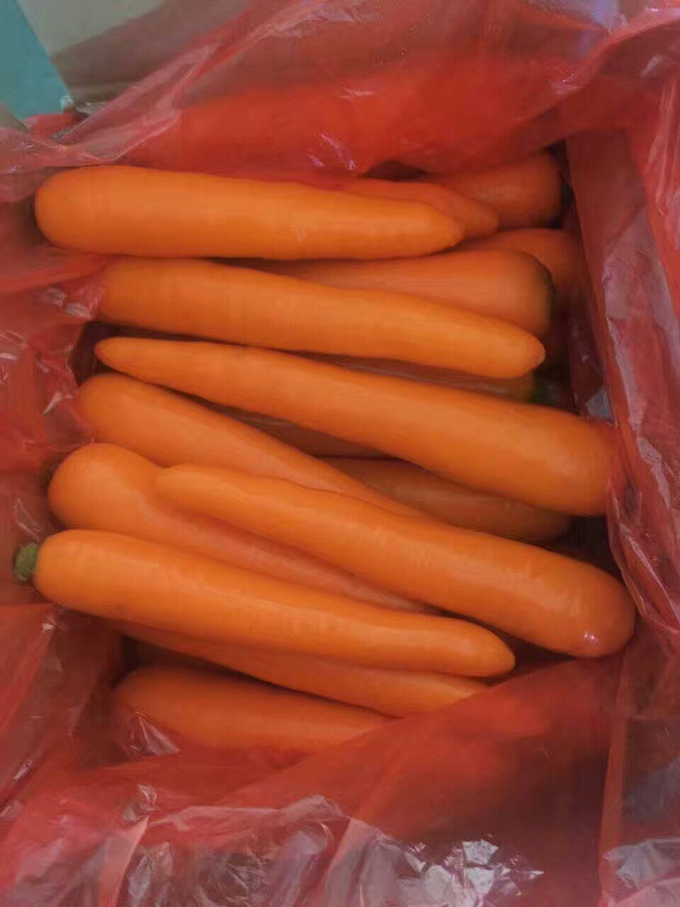 High Quality of New Crop Carrot (80-150g) pictures & photos