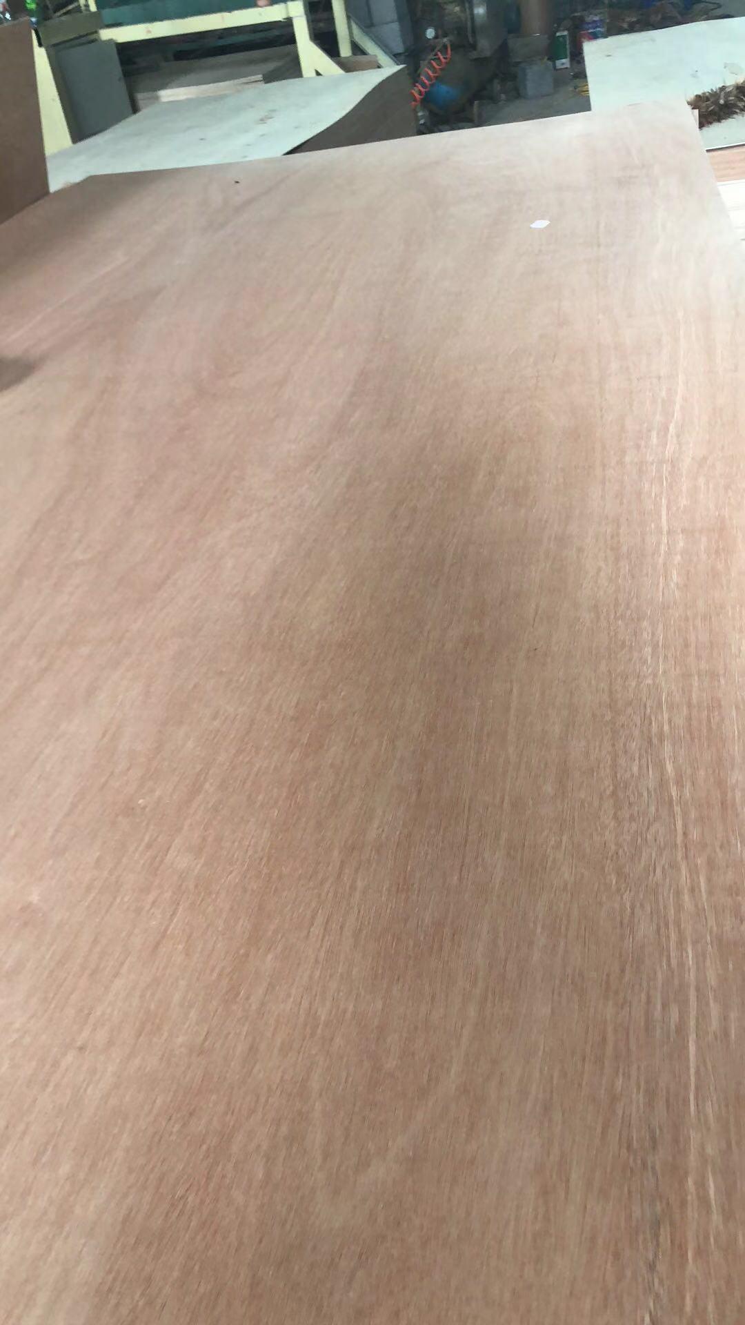 China Eucalyptus Hardwood Plywood With