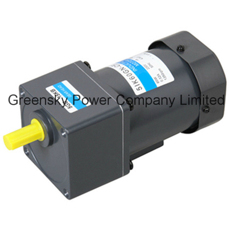 Small Ac Reversible Electric Gear Motor