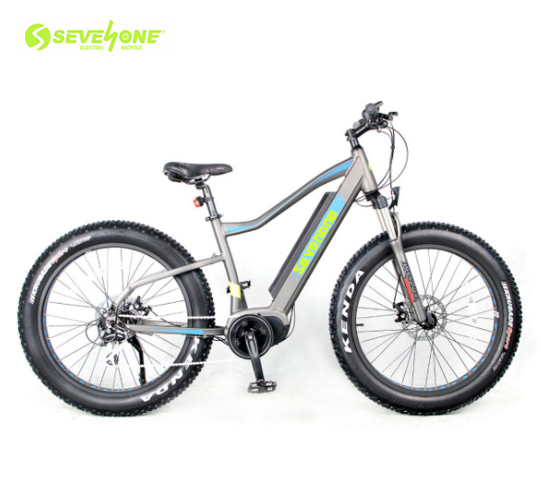 7 Speed 48V 500W Fat Tire Electric Bike Electric Bicycle with MID Motor pictures & photos