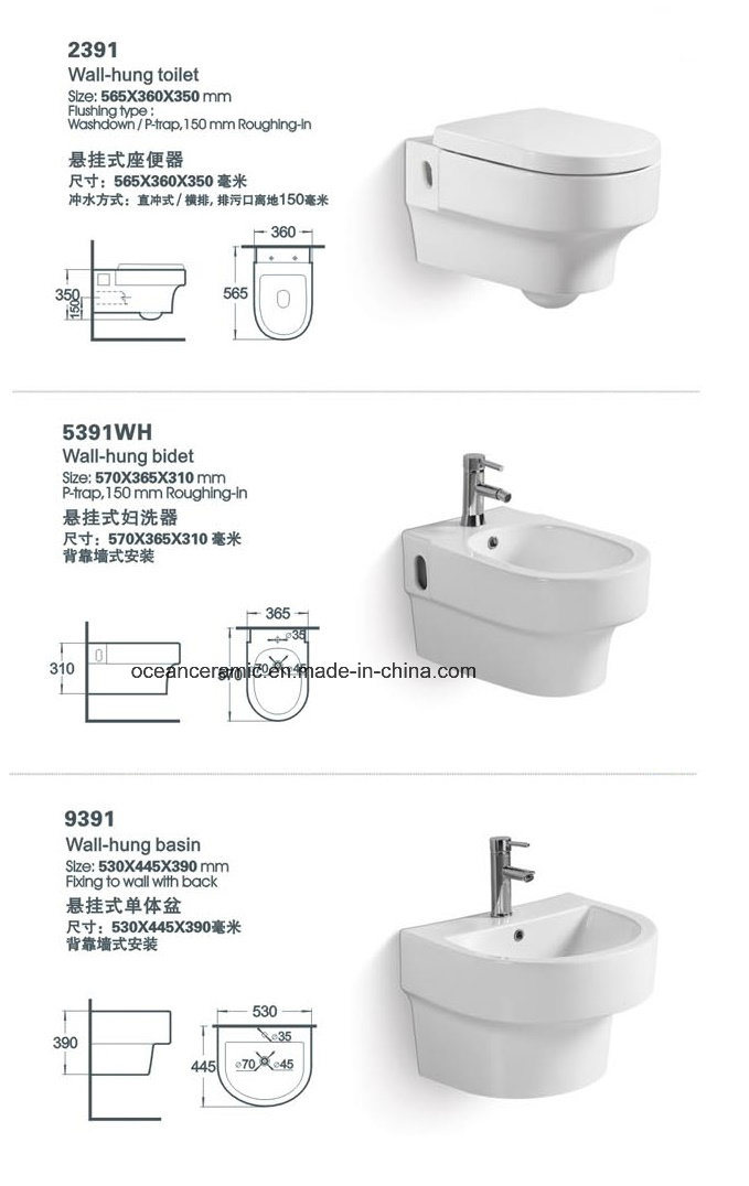 Cc-103 Concealed Cistern with Steel Frame for Wall Hung Toilet pictures & photos