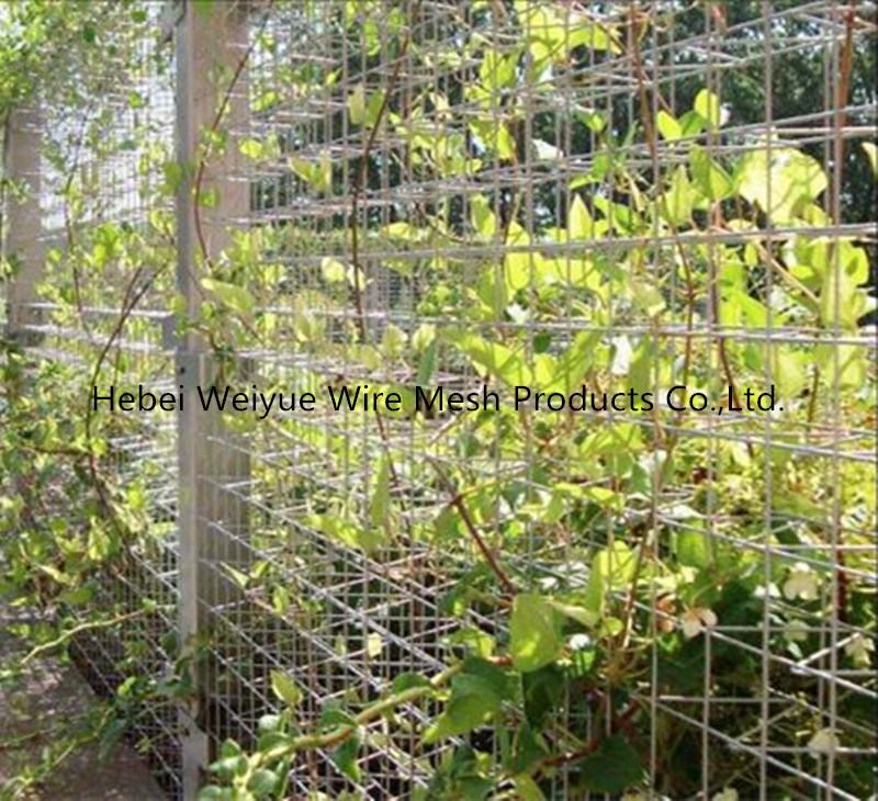 China Pvc Coated Welded Metal Wire Mesh Steel Panels Attahced To