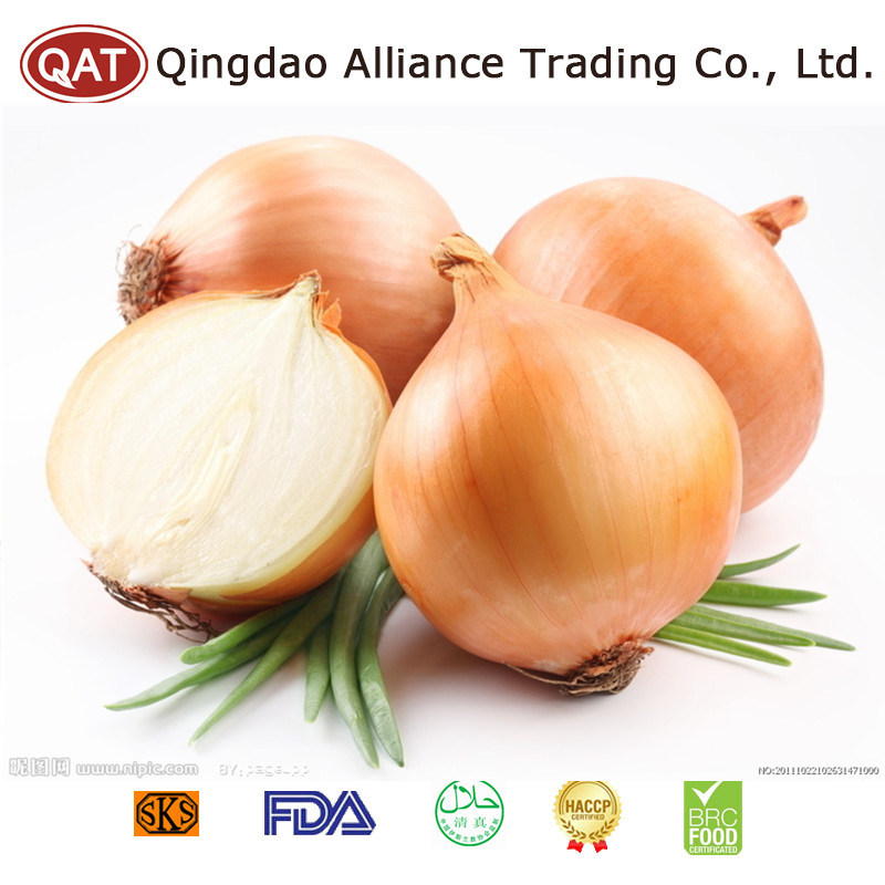 High Quality Fresh Yellow Onion with Competitive Price pictures & photos