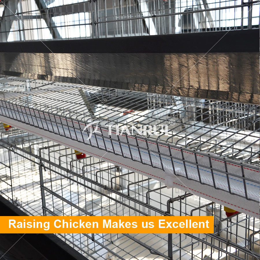 China High Quality Hot Galvanized A Type Chicken Wire Cage Photos ...