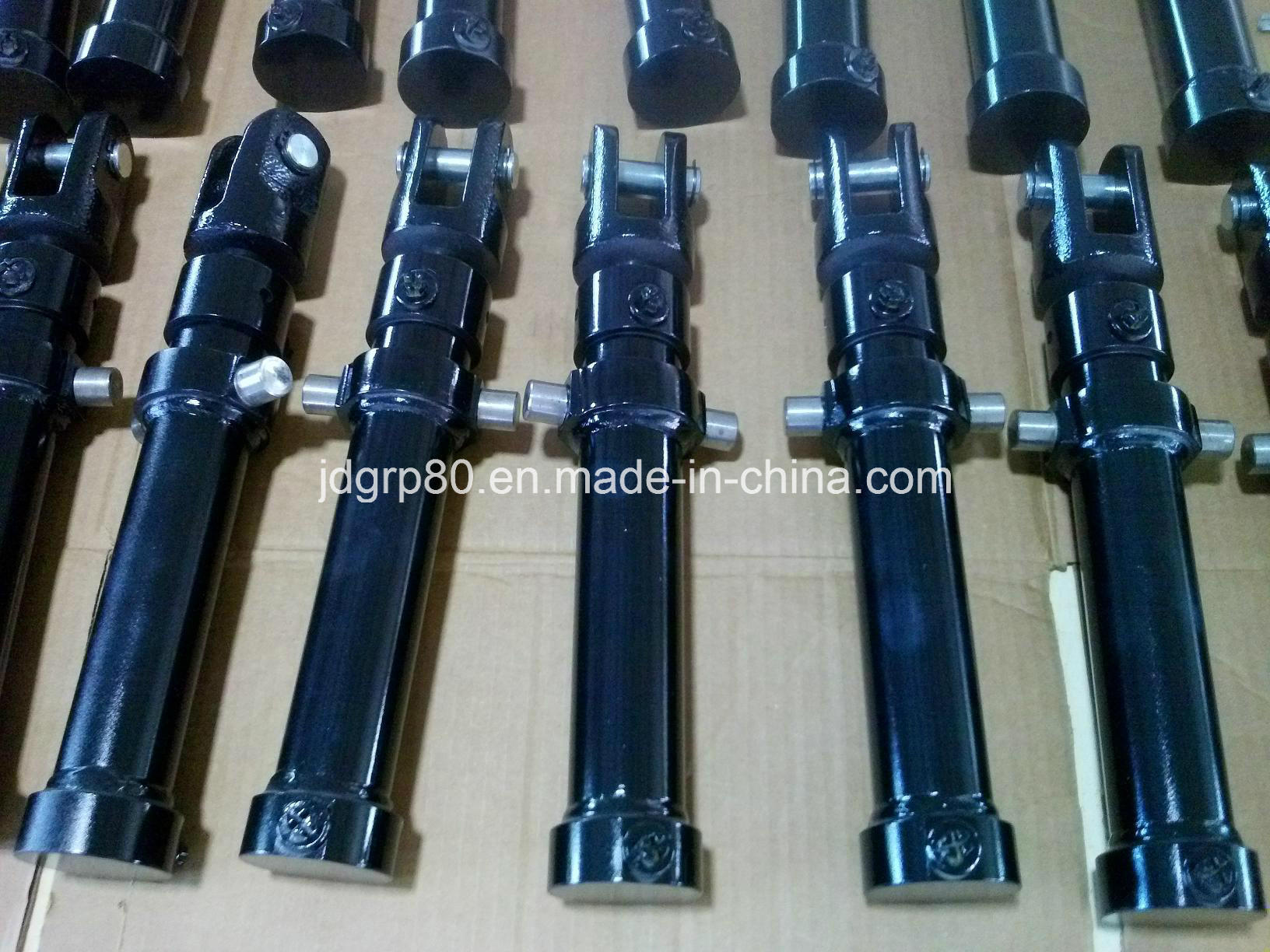3000psi Double Acting Hydraulic Cylinder pictures & photos