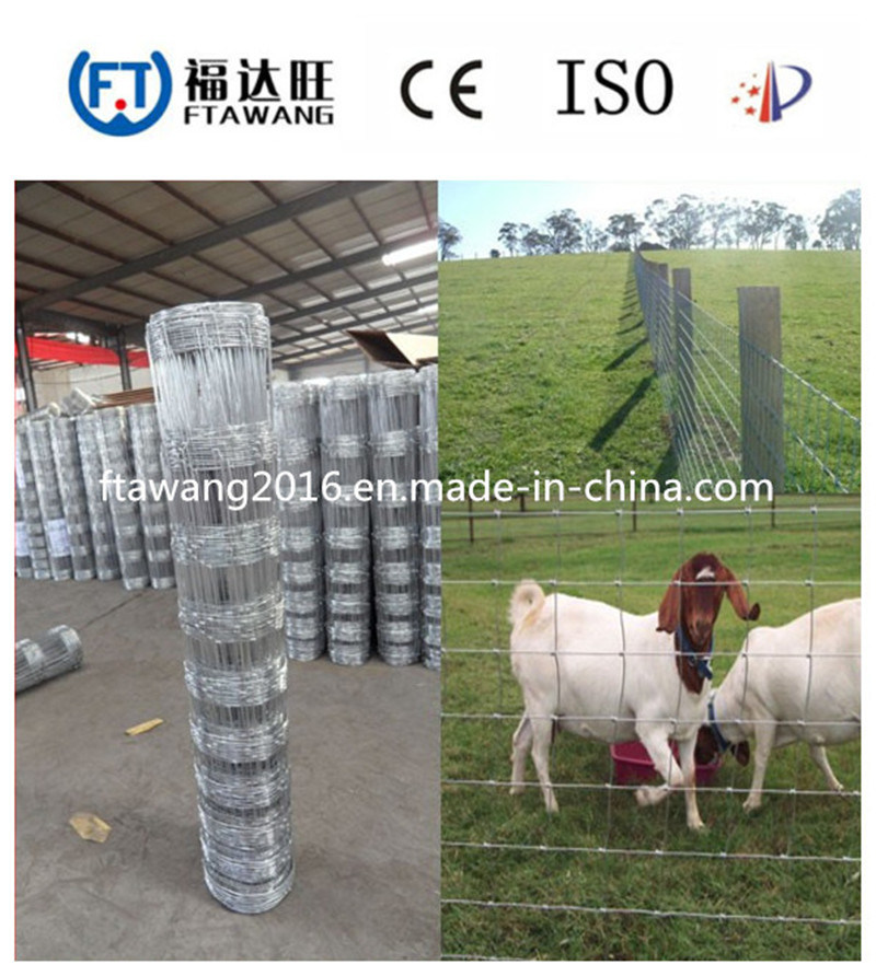 China High Security Cattle Goat Sheep Farm Wire Mesh Fence - China ...