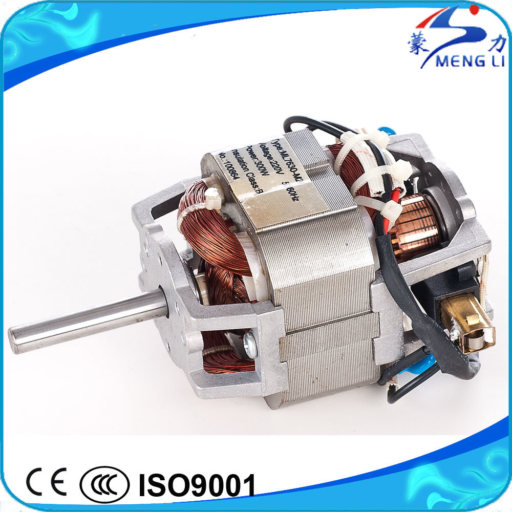 China Manufacturer 110V~240V, 100~300W AC Electric Series Juicer ...
