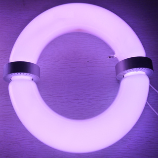China Magnetic Induction Grow Light China Induction Lamp