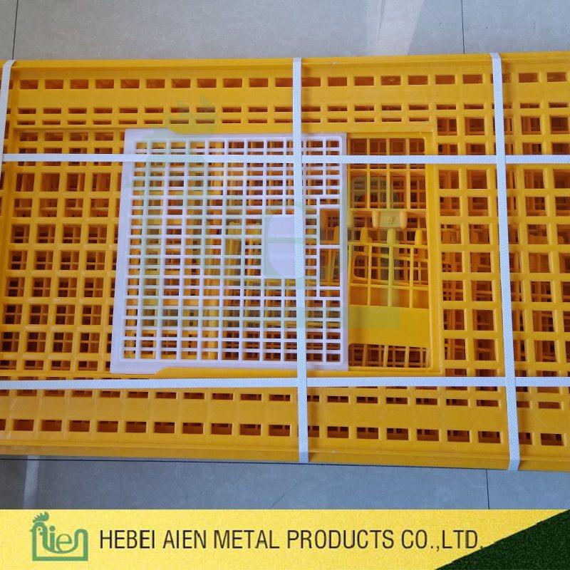 Wholesale Plastic Poultry Cage - Buy Reliable Plastic