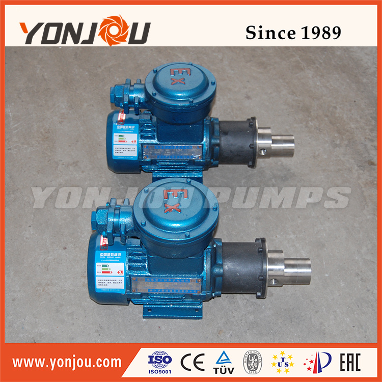 Magnetic Drive Pump of Ss304 Ss316 (CQCB) pictures & photos