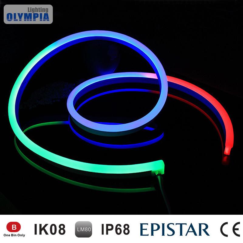 buy online d301d 5ad3f [Hot Item] 24V Mini IP68 RGB Flexible LED Neon Flex Tube Light
