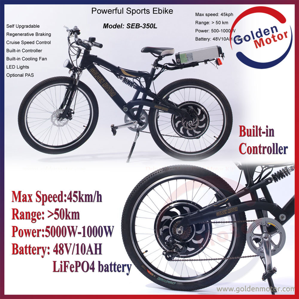 Ebike 48V 1000W Electric Bike with 10ah LiFePO4 Battery