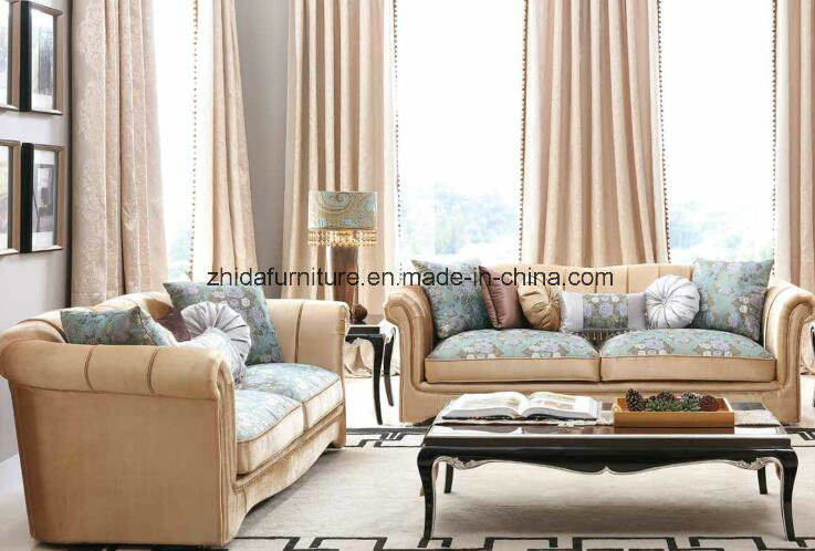 China Neo-Classic Style Living Room Sofa Furniture - China Sofa ...