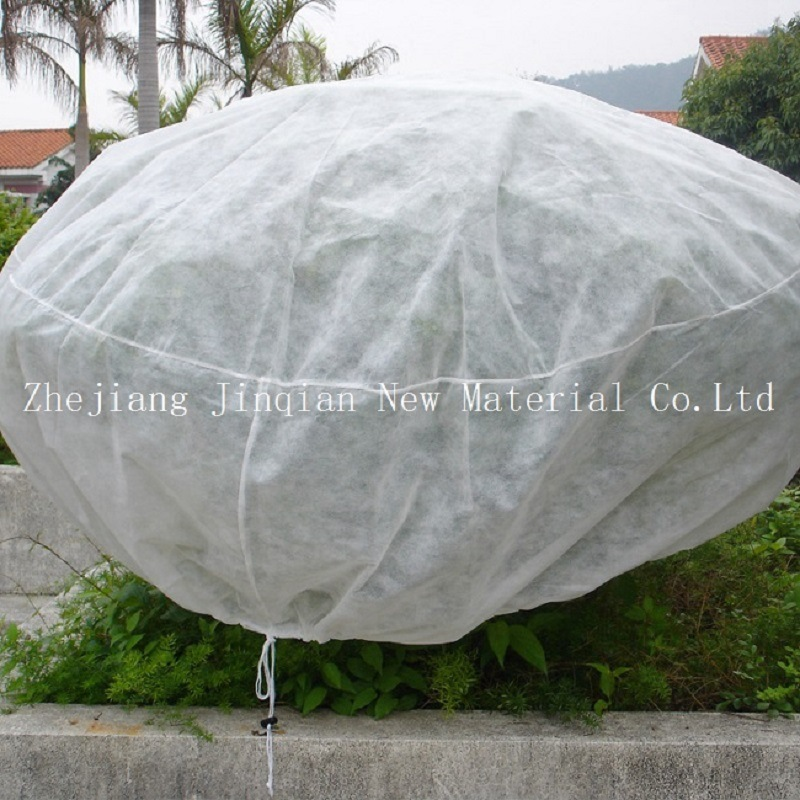 Agriculturer Use Disposable PP Spunbond Nonwoven Fabric for Plant Covers pictures & photos