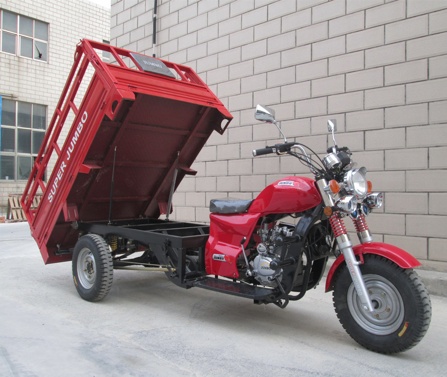 China Tricycle 3 Wheeler Rickshaw Wheel Bicycle Motorcycle