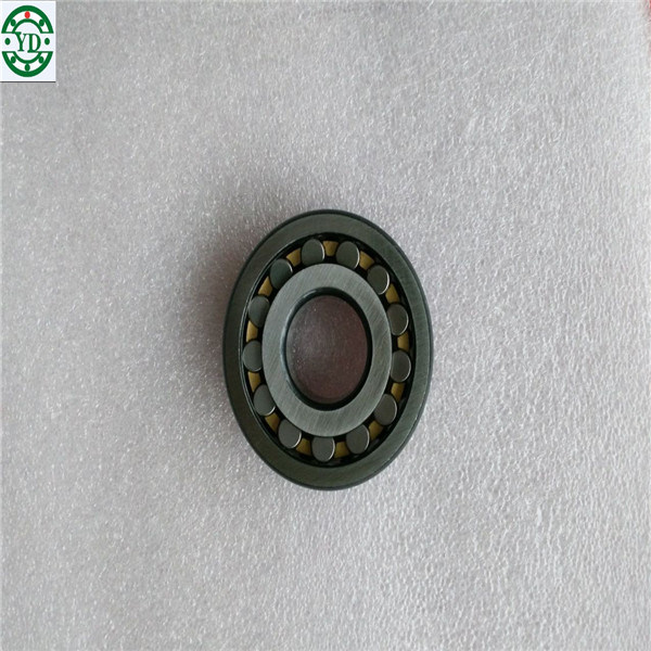Nn Nj Nu Nup Cylindrical Roller Bearing NSK Nup304em pictures & photos