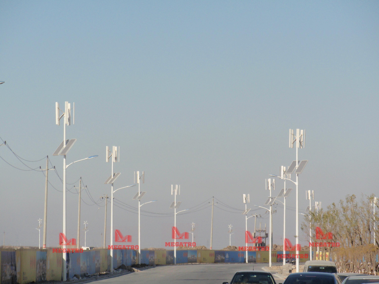 [Hot Item] Megatro Wind-Solar Hybrid system Light Pole