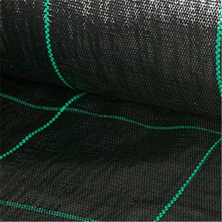 China Landscape Fabric Landscaping Plastic Barrier Fabric Black Control Weed Mat China Weed Mat And Ground Cover Price