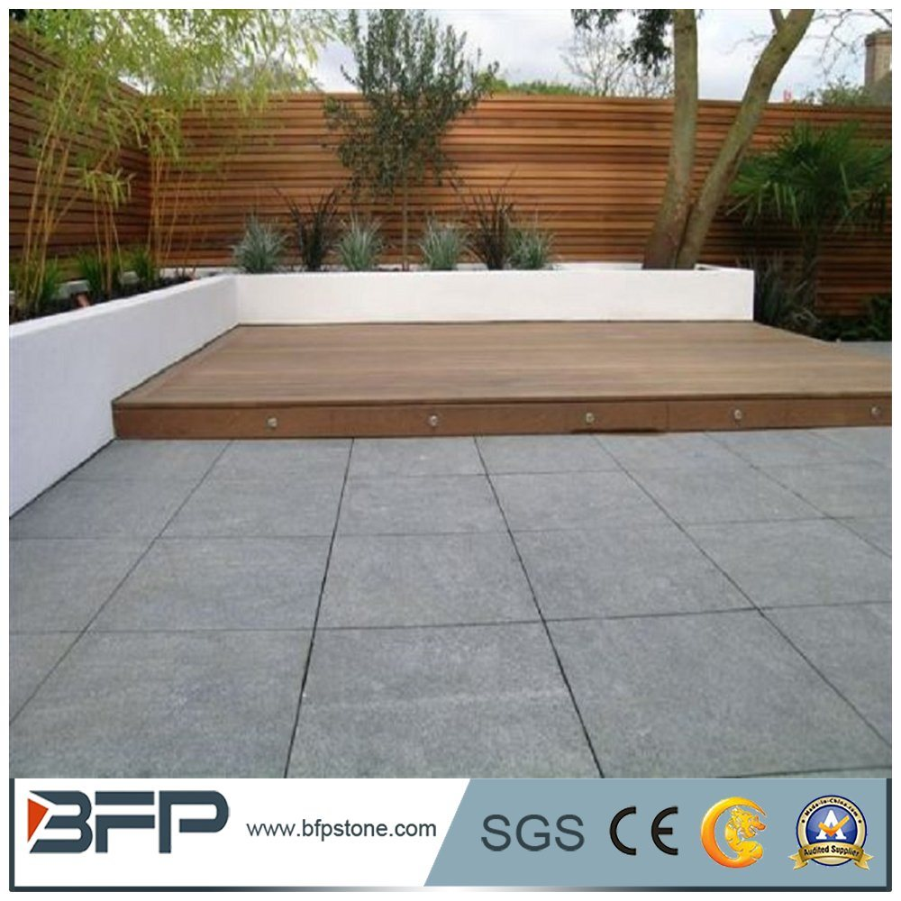 China Tactile Paving Stone Driveway Pavers Lowes Photos & Pictures