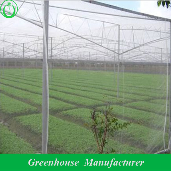 China Insect Proof Mesh Greenhouse Net Greenhouse Jp 166