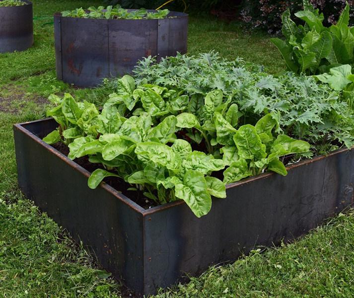 China Corten Steel Raised Garden Bed For Vegetable Flower Planter Edge Garden Raised Bed China Garden Raised Bed And Raised Bed Garden Price