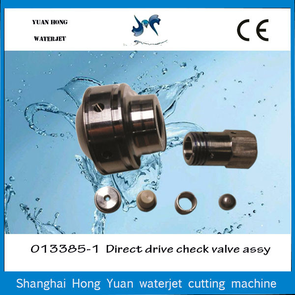 Hot Sale Water Jet Direct Drive Pump Part Check Valve Assy pictures & photos