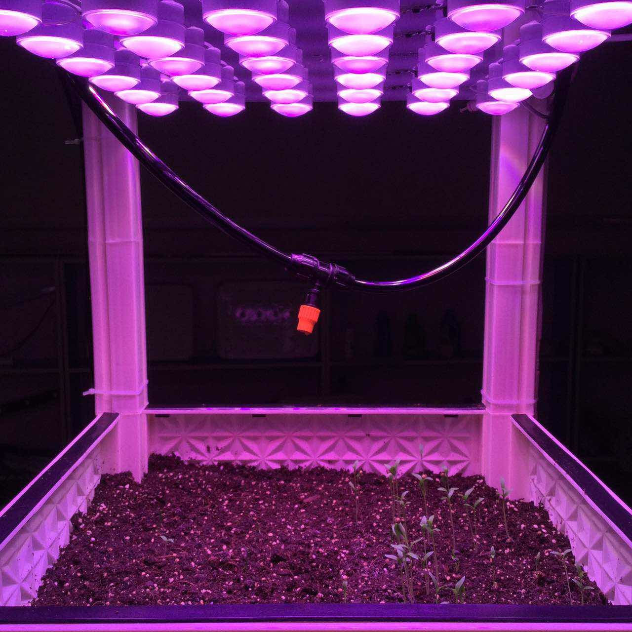 China Automatic Led Grow Light Module For Flowering And Ripening