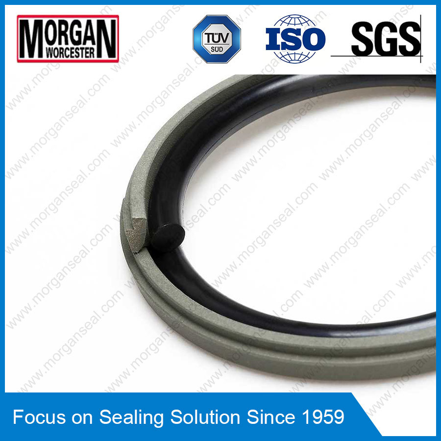Omk-E/PS/Og Series NBR/FKM/PTFE Hydraulic Piston Seal