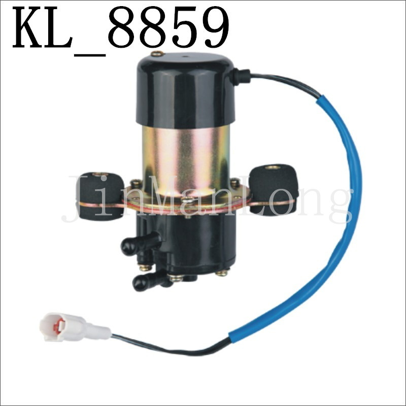 High Quality Electric Fuel Pump for Daewoo (UC-V6E: 94581768) with Kl-8859