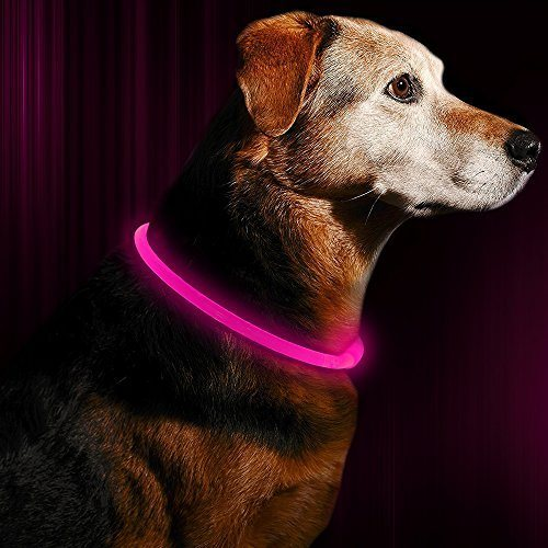 Glowing pet Dog Collar for Night Safety Fashion Light up Collar for Small Medium Large Dogs /… USB Rechargeable BSEEN LED Dog Collar