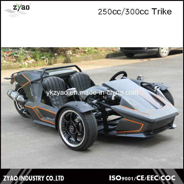 China 300cc Ztr Trike Adult Tricycle 24HP Trike Roadster 3