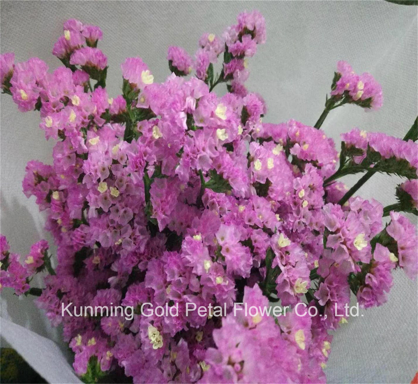 China Pink Flowers Pink Flowers Manufacturers Suppliers Made In