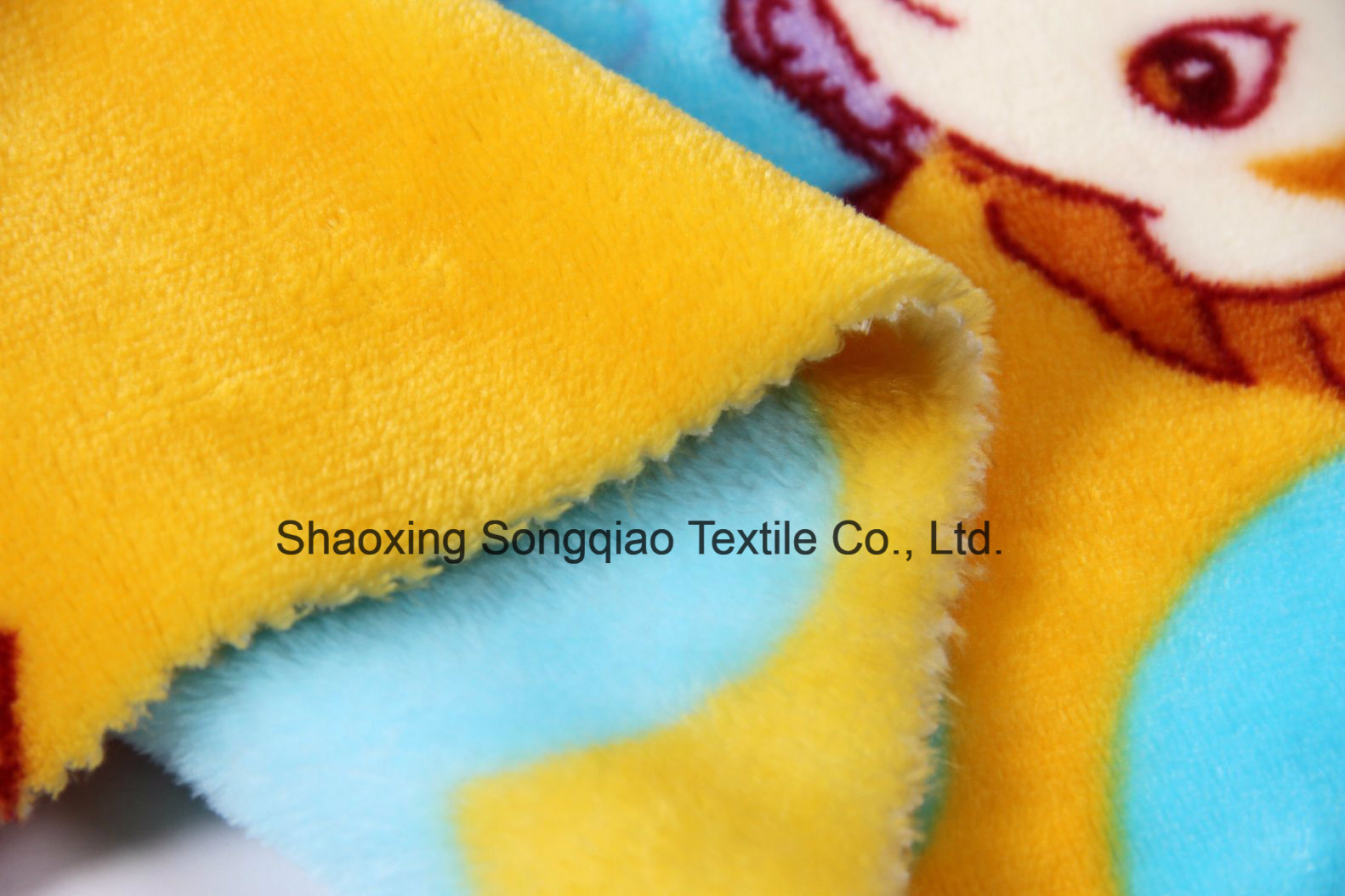 Printed Polyester Flannel/Coral Fleece Fabric - 14012-10 1# pictures & photos