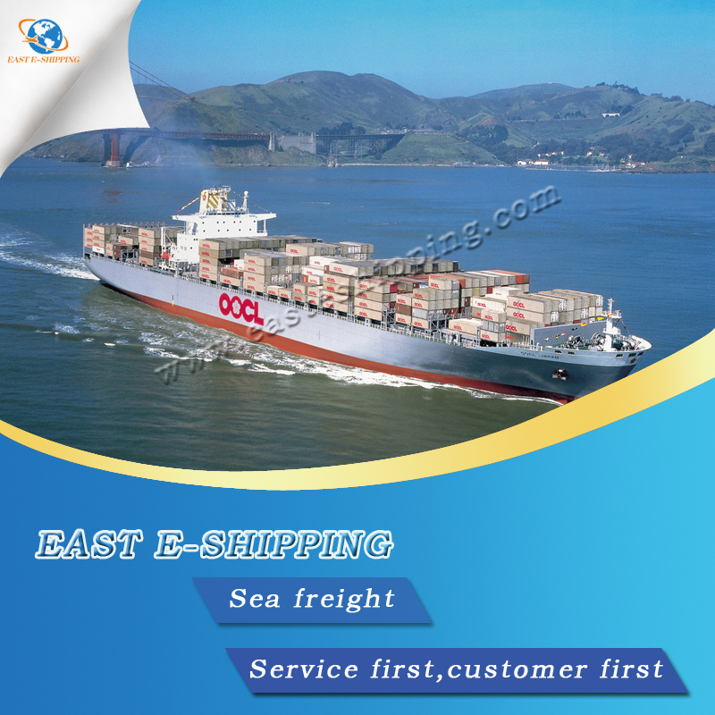 [Hot Item] Lowest Sea Freight Rate From China to USA