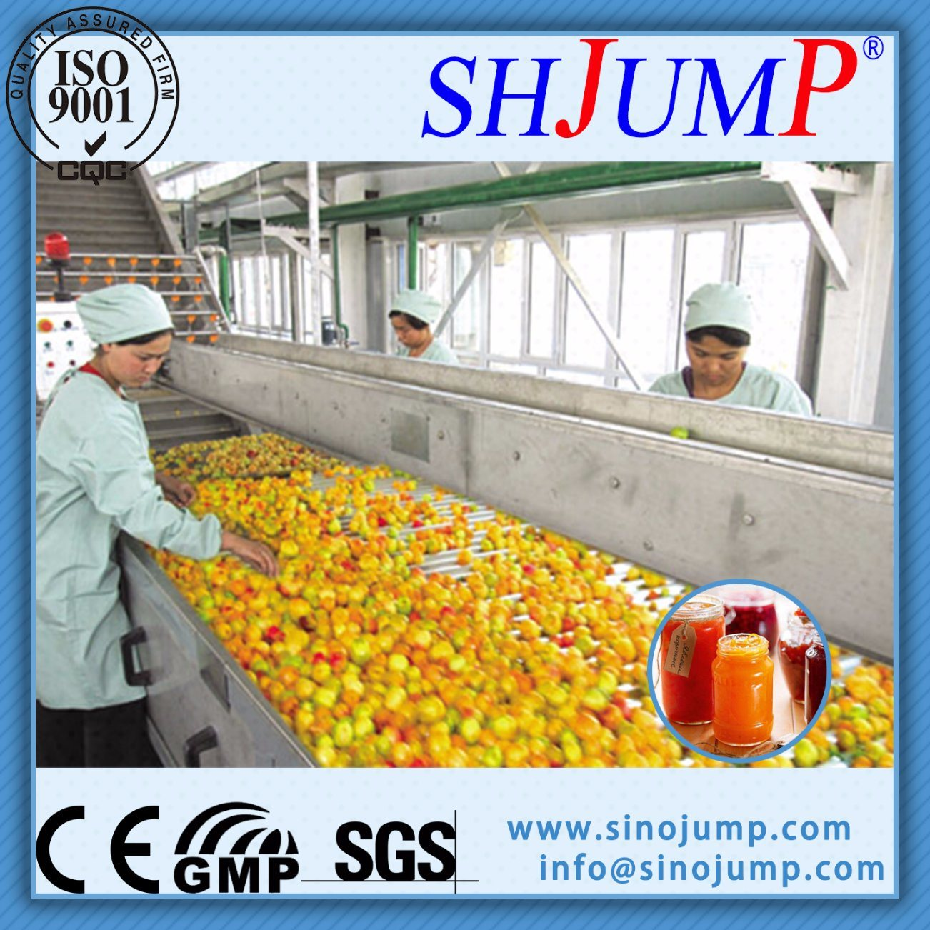 Loquat Juice and Loquat Syrup Production Machinery Export Worldwide