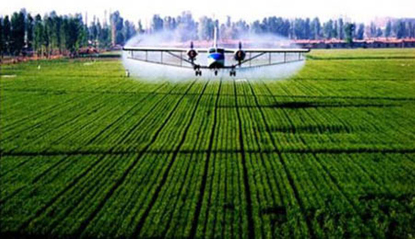 New Agrochemical Bio Pesticide Herbicides Cyhalofop-Butyl 97%Tc, 10%Ec, 20%Wp