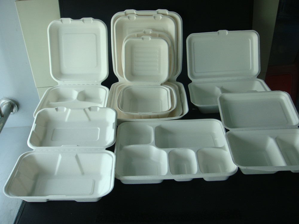 2compartment Bagasse Sugarcne Eco Clamshell